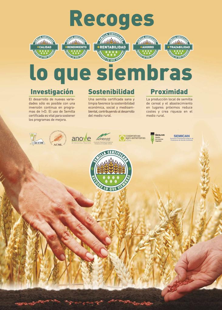 cartel semilla certificada 2016